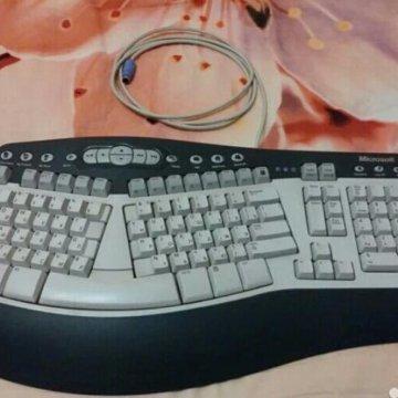 Microsoft Comfort Curve Keyboard 2000 Black Usb Kupit V Moskve