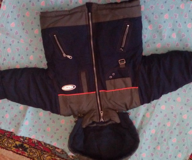 Куртка зимняя + штаны. Фото 2. Самара.