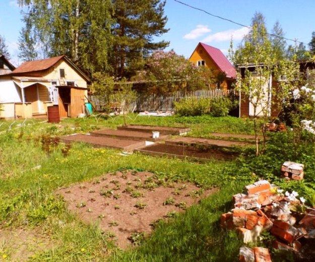 Каркасно-щитовая дача (50м2). летняя кухня. 6 сот. Фото 4.