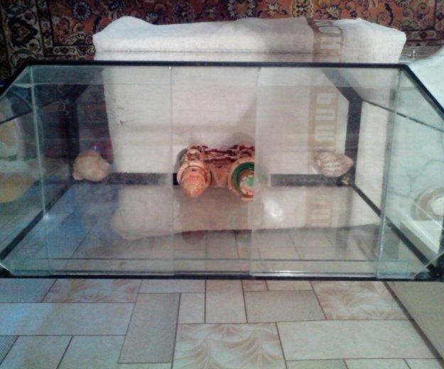 Аквариум. Фото 1. Азов.
