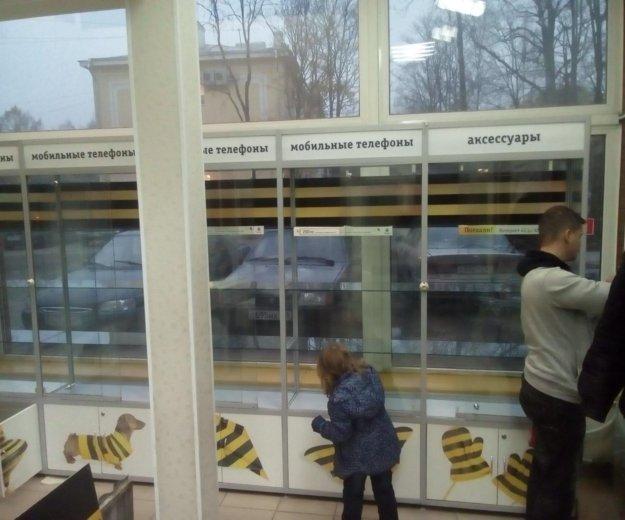 Витрины стеклянные. Фото 1.
