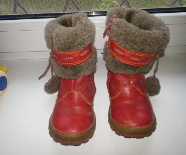 Зимние сапоги шаговита нат.кожа нат.мех размер 25. Фото 2. Калининград.