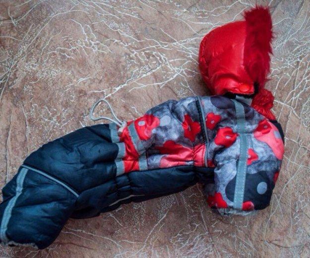 Комбинезон для собаки мелкой породы. Фото 1. Красноярск.
