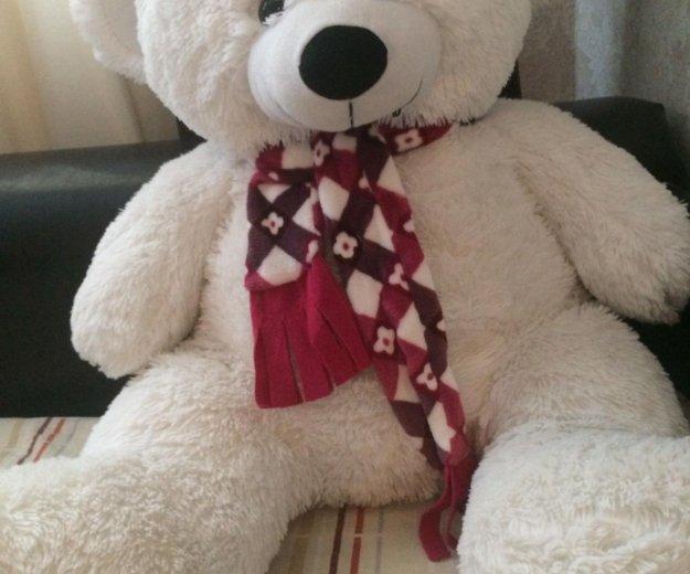 Продам медведя. Фото 1. Развилка.