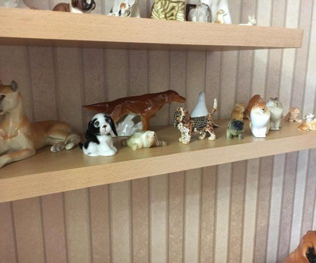 Коллекция фарфоровых собак. Фото 2. Тюмень.