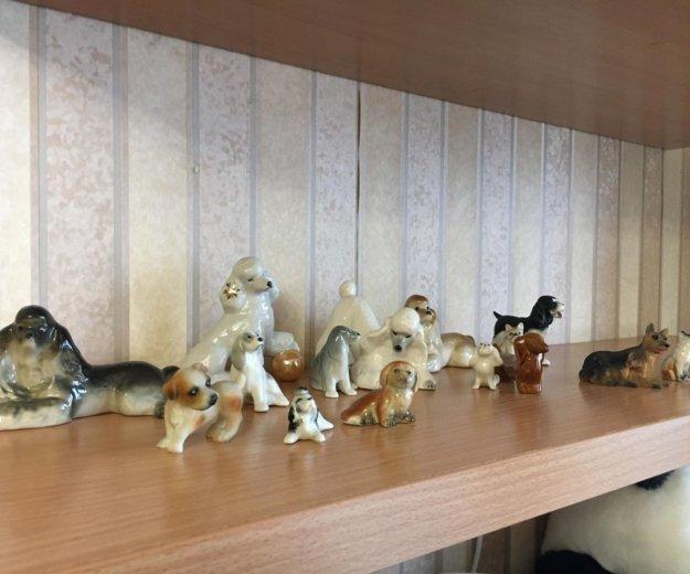 Коллекция фарфоровых собак. Фото 4. Тюмень.