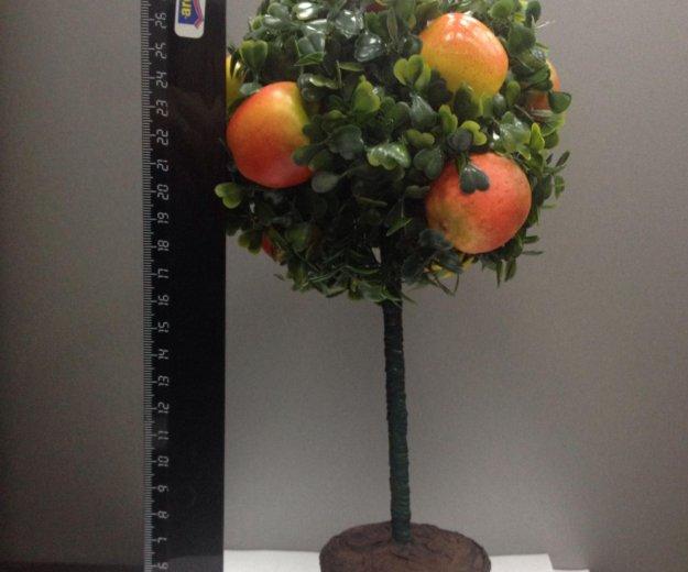 """Топиарий """"фруктовое дерево"""". Фото 1. Юбилейный."""