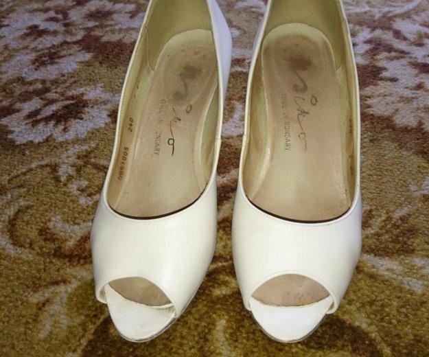 Кожаные туфли. Фото 1. Ильинский.