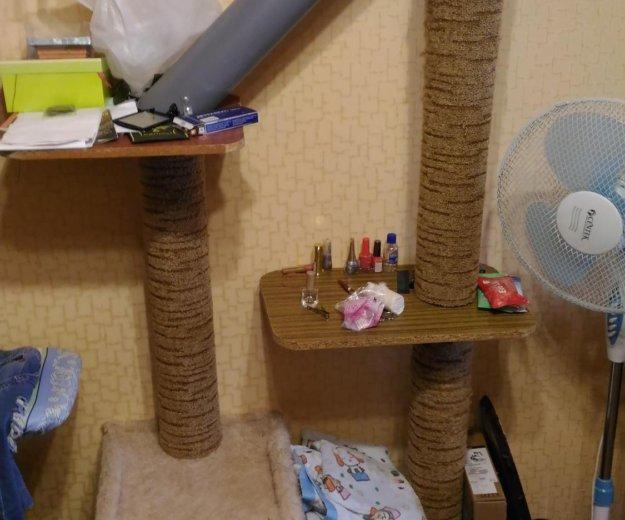 Когтеточка и домик для кошки. Фото 1. Майкоп.