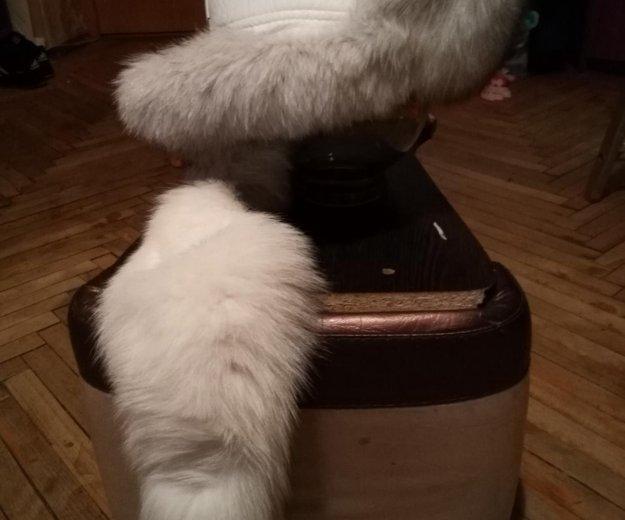 Новая шапка из нат.кожи и меха песца. Фото 2. Санкт-Петербург.