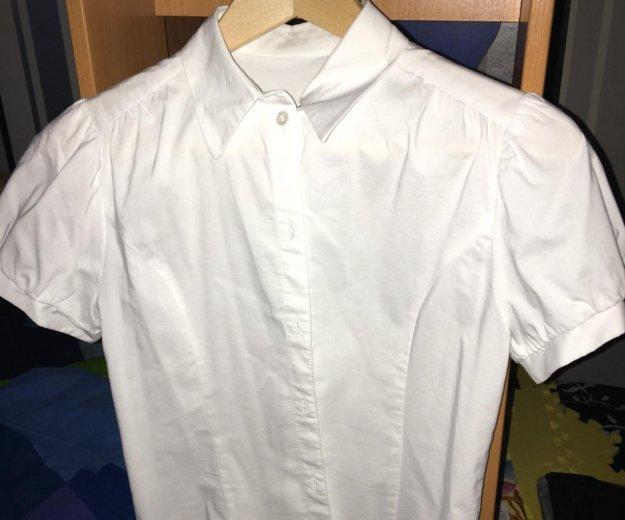 Блузка, джемпер, футболка. Фото 1. Москва.