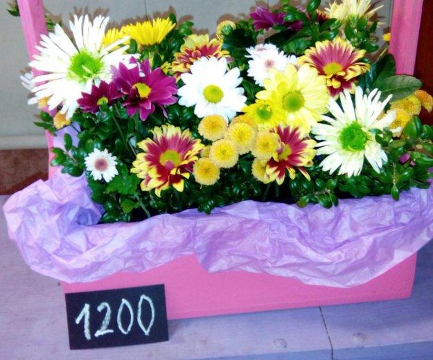 Деревянные кашпо с цветами. Фото 1. Краснодар.