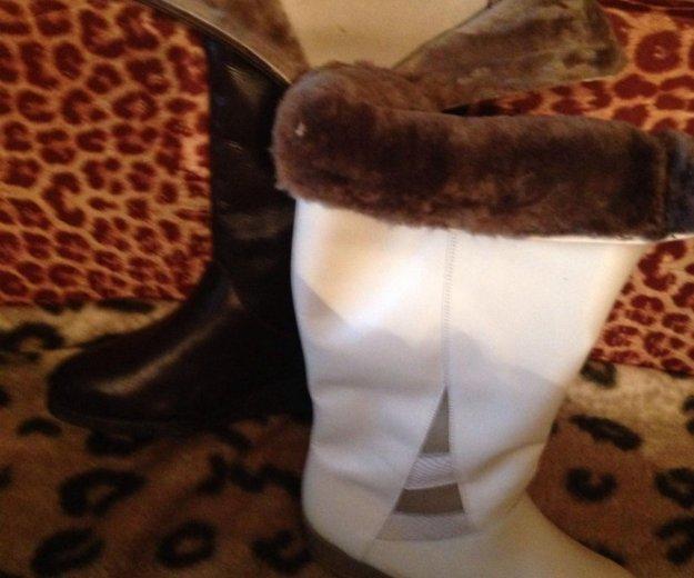 Сапоги  кожаные на нат меху австрия новые. Фото 3. Москва.