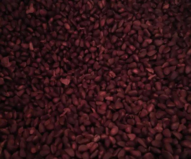 Кедровый орех и шишки. Фото 2. Черемхово.