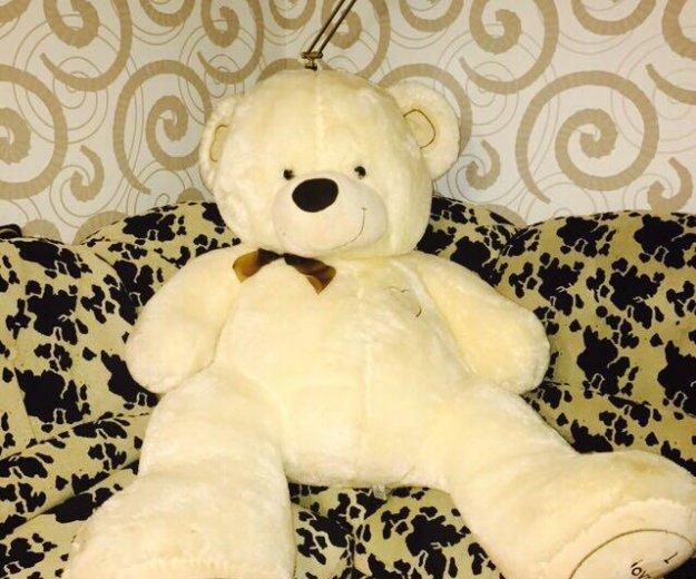 Медведь. Фото 1. Воркута.