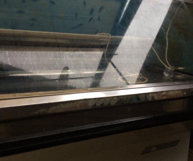 Холодильная витрина. Фото 3. Невинномысск.