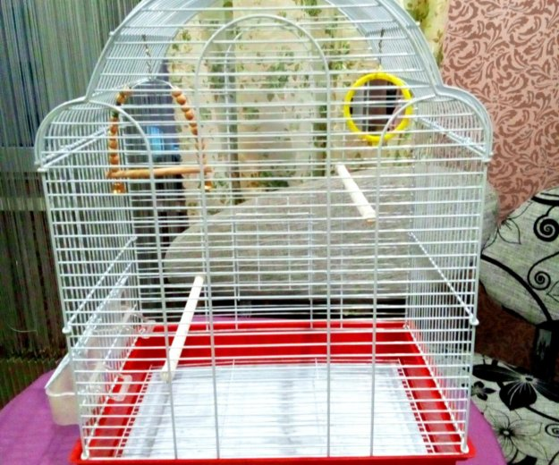 Клетка для птиц. Фото 1. Железнодорожный.