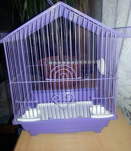 Клетка для попугайчика. Фото 1. Бачатский.