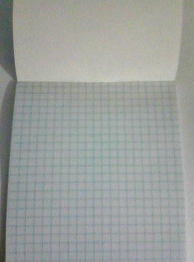 Блокнот с аниме блич в клетку. Фото 3. Стерлитамак.
