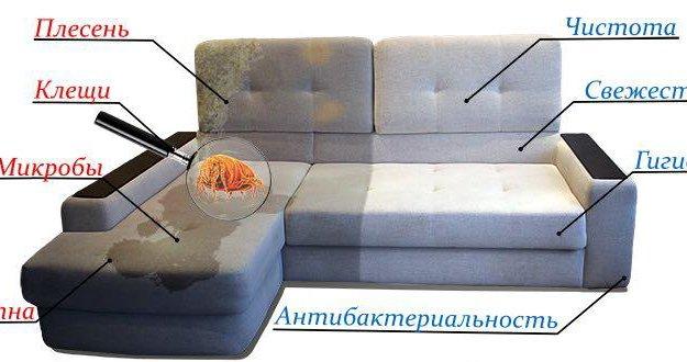 Чистка ковров и мягкой мебели. Фото 1.