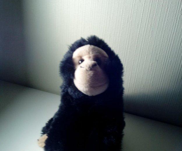 Мягкая обезьянка. Фото 1. Москва.