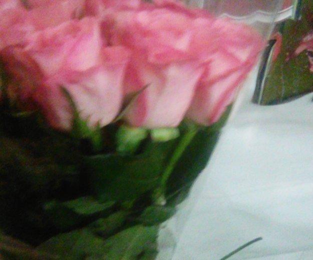 Цветы оптом. Фото 2. Чебоксары.