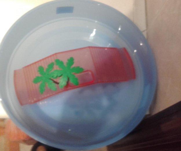 Аквариум для черепах(рыб). Фото 1. Рязань.