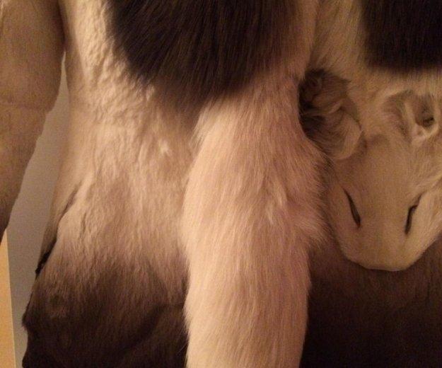 Полушубок из кролика. Фото 2. Львовский.