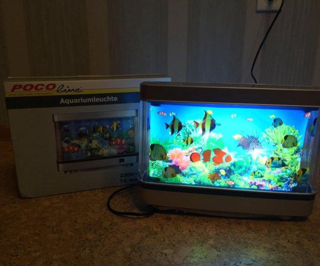 Светильник - аквариум. Фото 2. Тюмень.