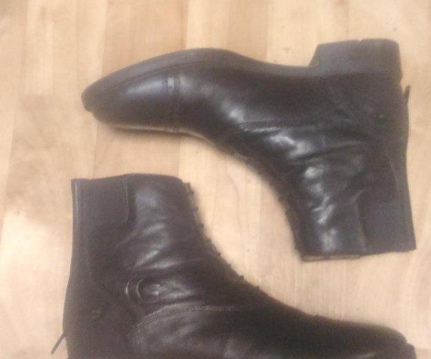 Ботинки для верховой езды. Фото 4. Москва.