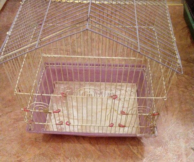 Клетка. Фото 1.