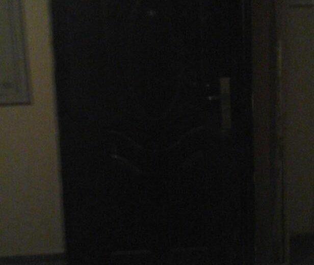 Дверь входная. Фото 2. Пенза.