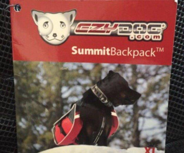 Рюкзак тренировочный для собак. Фото 4. Химки.