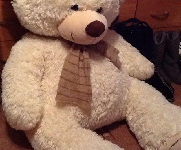 Медведь 1,20. Фото 1. Рязань.