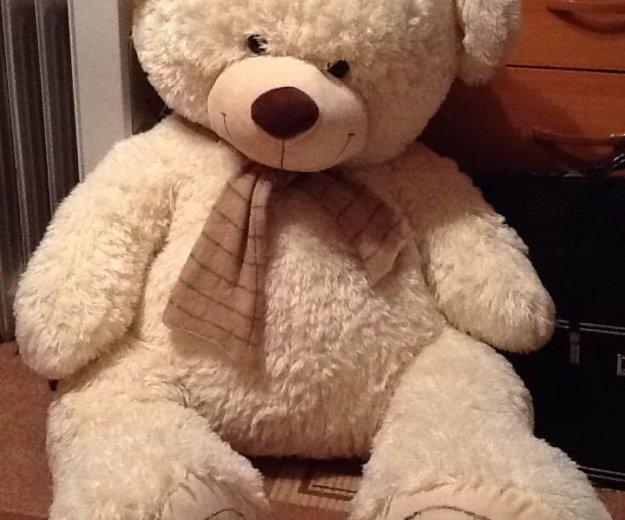 Медведь 1,20. Фото 3. Рязань.