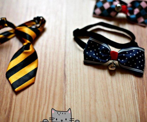 Аксессуары для собак и кошек. Фото 2. Москва.