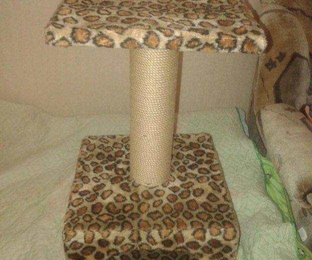 Домик для кошек. Фото 1. Пушкино.