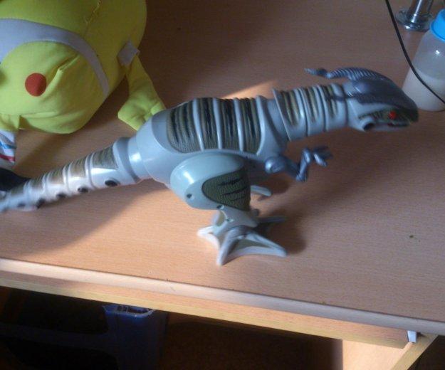 Динозавр на батарейках,ходит и рычит. Фото 4. Хабаровск.