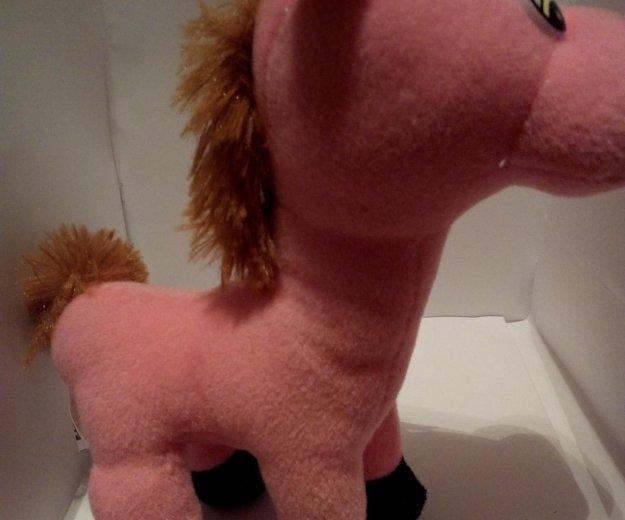 Лошадь. Фото 2.