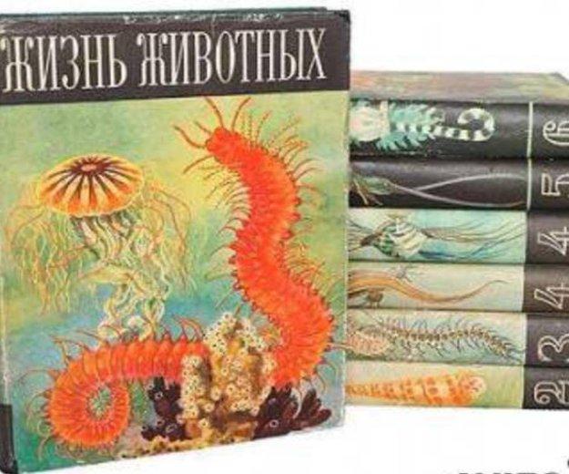 Книги. Фото 1. Рыбинск.