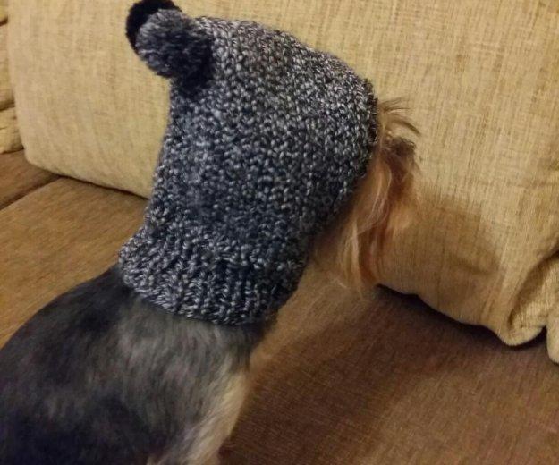 Шапки капор для собак. Фото 2. Москва.