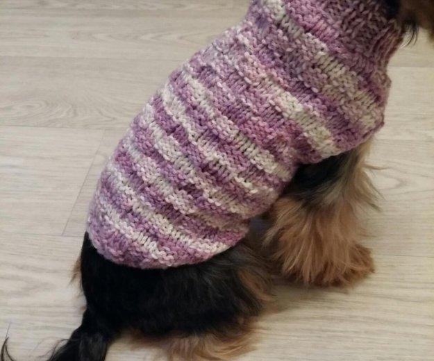 Одежда для собак. Фото 1. Москва.
