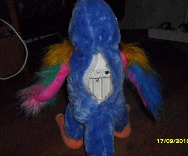 Интерактивная игрушка попугай повторюшка говорящий. Фото 3. Уфа.