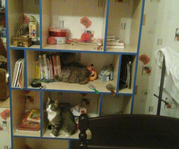 Полка для книг. Фото 2. Отрадное.
