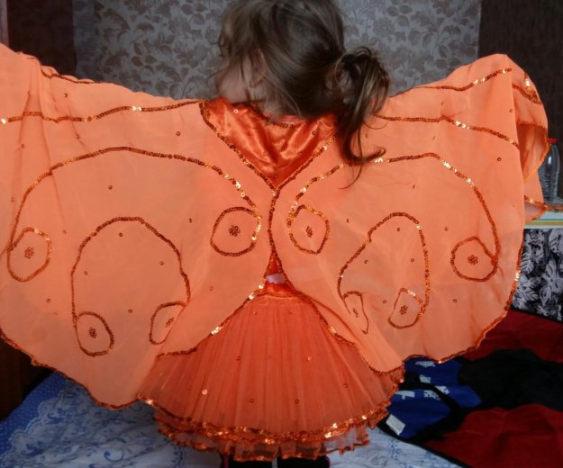 Костюм бабочки. Фото 1. Новосибирск.