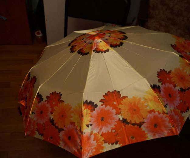 Зонт. Фото 1. Ярославль.