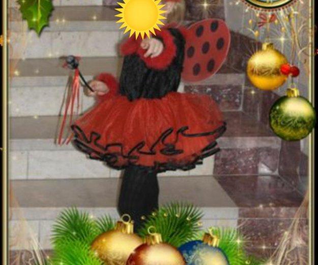 Новогодний костюм, божья коровка. Фото 1. Новосибирск.