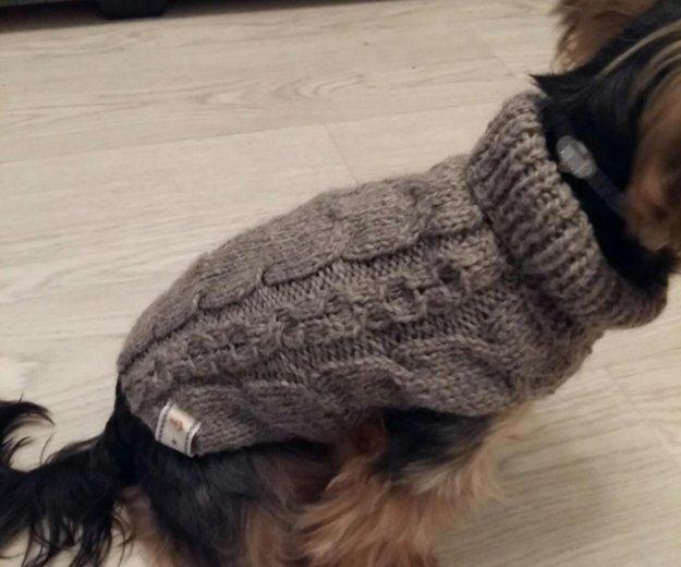 Одежда для собак. Фото 2. Москва.