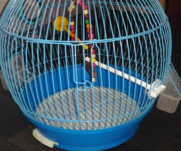 Клетка для попугая. Фото 1.