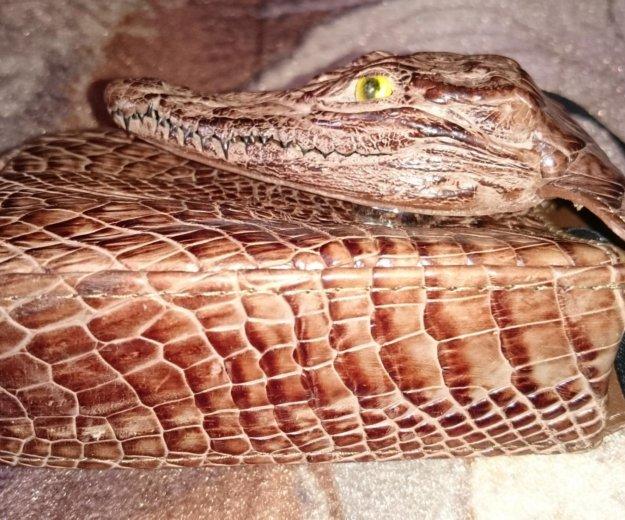 Портсигар из кожи крокодила. Фото 2. Люберцы.